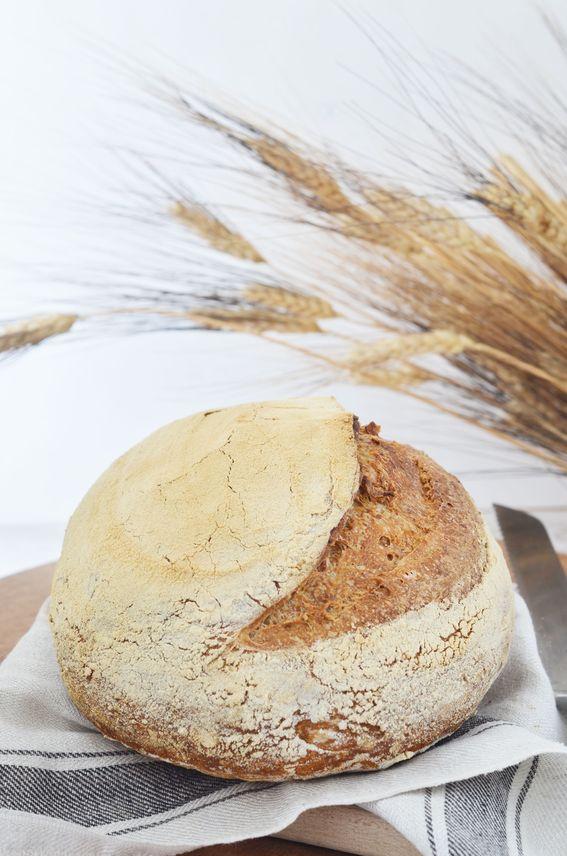 Pane con li.co.li. farina 0 e farina integrale con cottura frigo forno